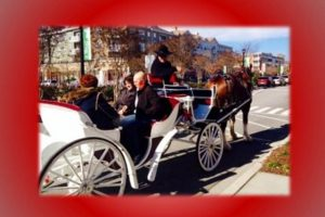 FREE Valentine's Day Carriage Rides