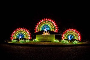 Brookgreen Gardens Summer Lights Festival